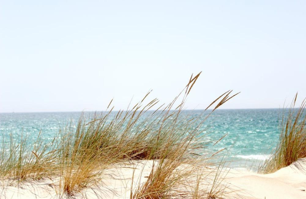 Een vakantie in eigen land is duurzamer